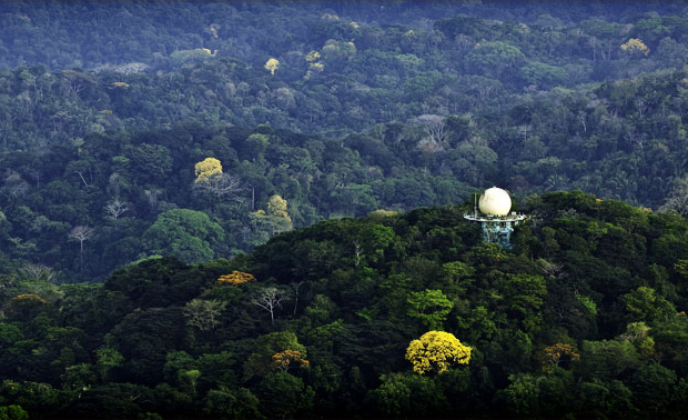 The Canopy Tower, Panama