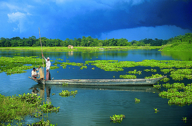 """Majuli Island"" by Kalai Sukanta from Shillong, India - Majuli Island, Assam. Licensed under CC BY 2.0 via Commons - https://commons.wikimedia.org/wiki/File:Majuli_Island.jpg#/media/File:Majuli_Island.jpg"